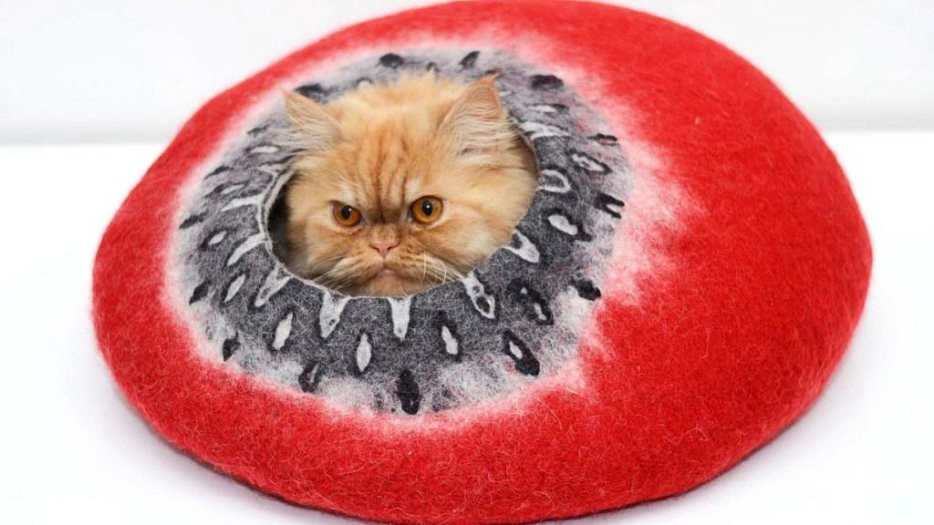 ahv.cat.enrich.2