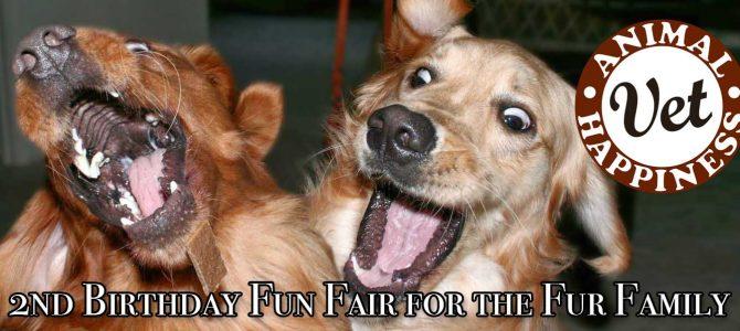 2nd Birthday Fun Fair For the Fur Family